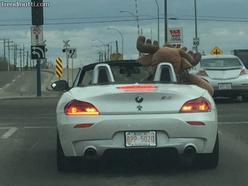 Nur in Kanada...
