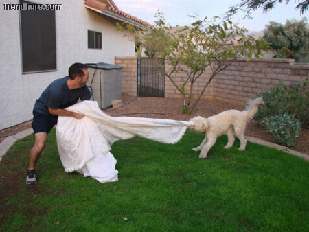 Hochzeitskleid der Ex-Frau