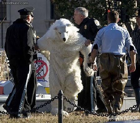 Im Kostüm festgenommen