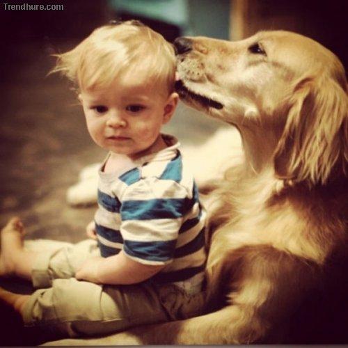 Der beste Freund des Menschen