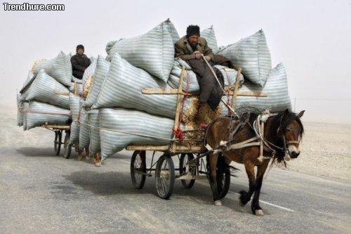 Extreme Transporte