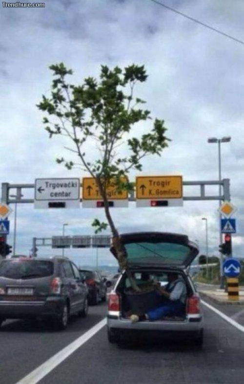 Transport-Fails