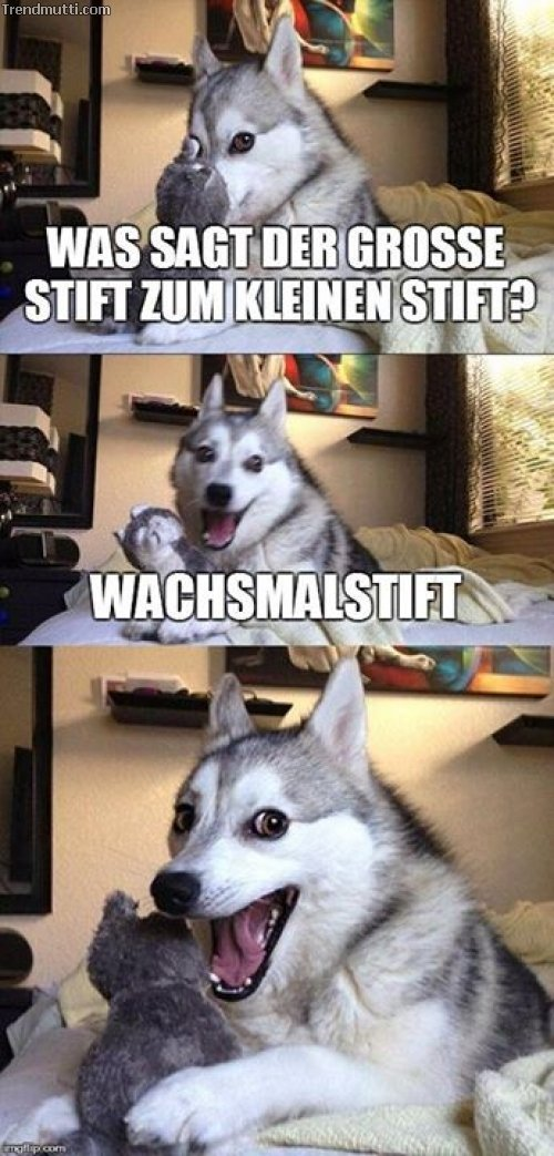 Flachwitze #2