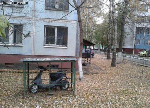 Meanwhile in Russia #31