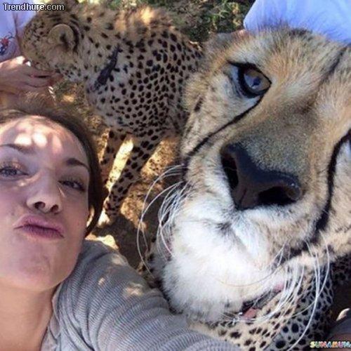 Spektakuläre Selfies